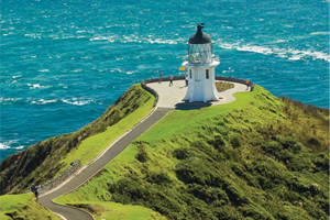 Fuller's GreatSights Cape Reinga Wanderer Day Tour